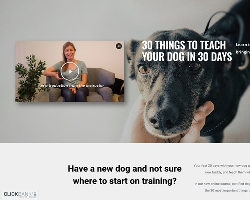Digital Dog Training Course: 30 Things To Teach Your Dog In 30 Days